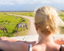3 Days SHARED Safari - Lake Manyara, Ngorongoro Crater, Tarangire