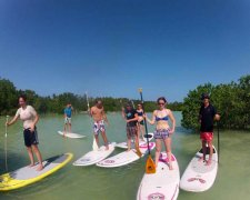 Mangroves SUP Tour